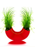 Grass Reflection Framed Prints - Green and Red Framed Print by Kristin Kreet