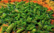 Green Beans Prints - Green Bean Montage Print by Ron Bissett