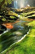 Adam Jewell - Green Below The Falls