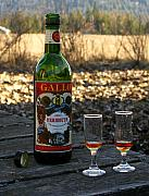 Robert Bissett - Green Bottle