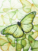 Green Yellow Paintings - Green Butterflies by Christina Meeusen