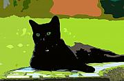 Cat Art Digital Art Prints - Green eyes Print by David Lee Thompson