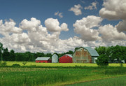 Soybean Digital Art Posters - Green Fields and Popcorn Skies Poster by Garth Glazier