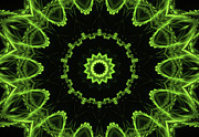 Fractal Patterns - Green Fire Song by Edan Chapman