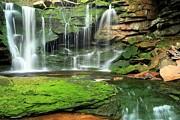 Adam Jewell - Green Forest Falls