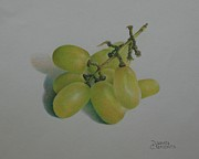 Bunch Of Grapes Drawings Framed Prints - Green Grapes Framed Print by Pamela Clements