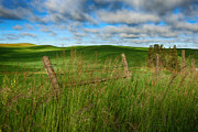 Eastern Washington Posters - Green Green grass of Home Poster by Reflective Moments  Photography and Digital Art Images