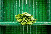 Milk Crate Prints - Green Greens Print by Lauri Novak