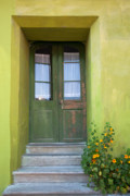 Entrance Door Prints - Green house Print by Gabriela Insuratelu