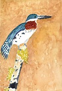 David Crowell - Green Kingfisher