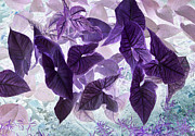 Color Purple Posters - Green leaves Negative Poster by Linda Phelps