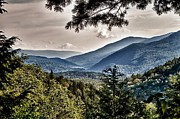 Nathan Larson Metal Prints - Green Mountain National Forest Metal Print by Nathan Larson