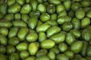Olives Art - Green Olives by Joana Kruse