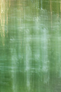 Chad Davis - Green Painted Background