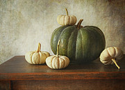Ground Framed Prints - Green pumpkin and gourds on table  Framed Print by Sandra Cunningham