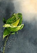 Rosebud Paintings - Green Rosebud by Marina  Kulik