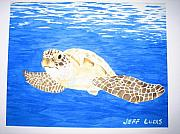 Jeff Lucas Framed Prints - Green Sea Turtle Framed Print by Jeff Lucas