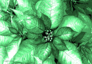 Shimmer Prints - Green Shimmer Print by DigiArt Diaries by Vicky Browning