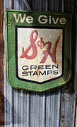 Garage Wall Art Framed Prints - Green Stamp Sign Framed Print by Peter Chilelli