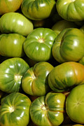 Mediterranean Framed Prints - Green Tomatoes Framed Print by Frank Tschakert