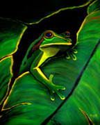 Green Leafs Prints - Green Tree Frog and Leaf Print by Nick Gustafson