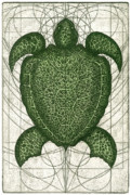 Turtle Mixed Media Metal Prints - Green Turtle Metal Print by Charles Harden