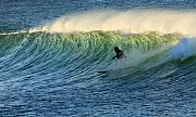 Surf Lifestyle Metal Prints - Green Wall Surfer Metal Print by Mike Coverdale