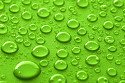 Clean Water Prints - Green water drops Print by Blink Images