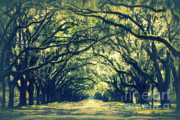 Old Country Roads Photo Posters - Green World Poster by Carol Groenen