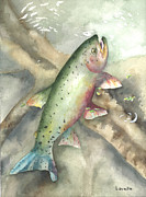 Cutthroat Posters - Greenback Cutthroat Trout Poster by Kimberly Lavelle