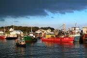 Fishing Trawler Prints - Greencastle, County Donegal, Ireland Print by Peter Zoeller