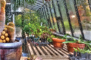 Rainy Day Photos - Greenhouse - In a Greenhouse Window  by Mike Savad