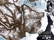 Sea Ice Prints - Greenland Sea Ice Print by Nasa