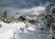 Greenleaf Hut - White Mountians Nh Print by Erin Paul Donovan