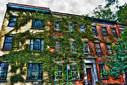 Townhouse Prints - Greenwich Village Ivy 2 Print by Randy Aveille