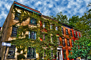 Greenwich Framed Prints - Greenwich Village Ivy Framed Print by Randy Aveille