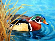 Wood Duck Painting Metal Prints - Greeting  the Morning  Wood Duck Metal Print by Carol Reynolds