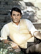 1950s Portraits Framed Prints - Gregory Peck, Ca. Late 1950s Framed Print by Everett