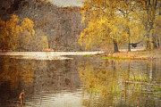 High Park Prints - Grenadier Pond Print by Cabral Stock