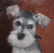 Miniature Schnauzer Paintings - Gretel by Colleen Lambert