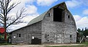 Old Barn Posters - Grey Barn Poster by Laurie With