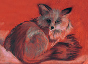 Fox Pastels Prints - Grey Fox Print by Karen Cruz