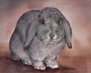 Nursery Room Art Prints Paintings - Grey Lop Bunny Rabbit by Teresa Silvestri