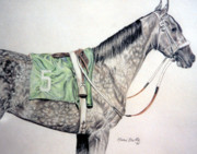 Race Drawings Originals - Grey Number 5 by Marni Koelln