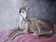 Racer Painting Framed Prints - Greyhound at Rest Framed Print by George Pedro