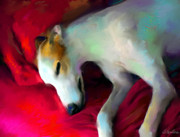 Sleeping Dog Art - Greyhound Dog portrait  by Svetlana Novikova