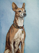 Greyhound Dog Metal Prints - Greyhound Metal Print by Irina Sztukowski