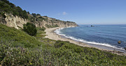 Greyhound Photos - Greyhound Rock Beach Panorama - Santa Cruz - California by Brendan Reals