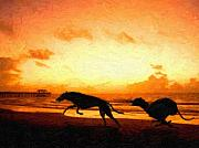 Sunset Paintings - Greyhounds on beach by Michael Tompsett