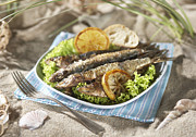 Salad Posters - Grilled Sardines With Salad And Lemon In Plate Poster by Westend61